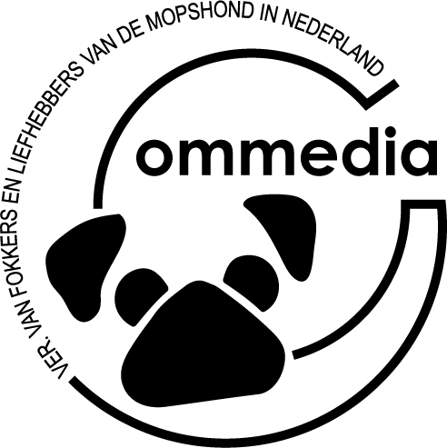 Commedia logo